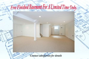 finished basement incentive